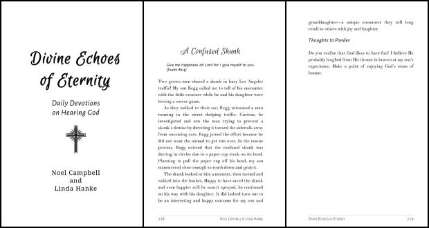 Divine Echoes of Eternity Excerpt
